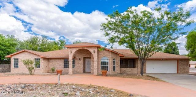 924 Calle Contento, Las Cruces, NM 88007 (MLS #1901385) :: Steinborn & Associates Real Estate