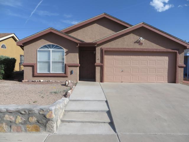 378 Macleod Road, Las Cruces, NM 88001 (MLS #1901402) :: Steinborn & Associates Real Estate