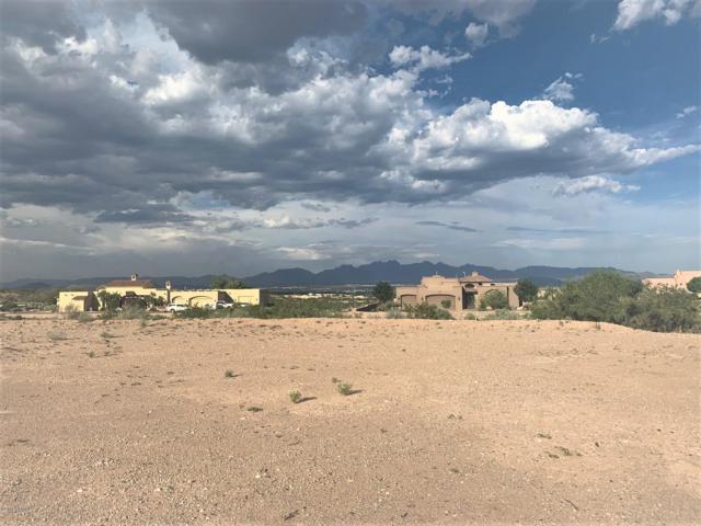 1239 Titania Court, Las Cruces, NM 88007 (MLS #1901426) :: Steinborn & Associates Real Estate