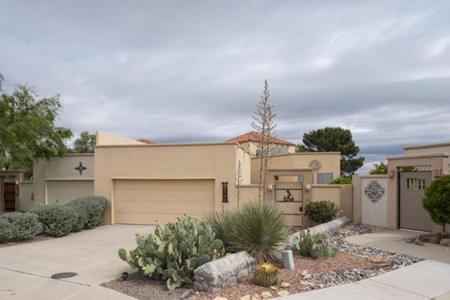 6740 Camino Blanco, Las Cruces, NM 88007 (MLS #1901428) :: Steinborn & Associates Real Estate