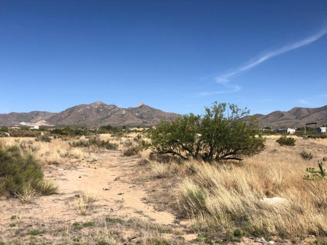 7170 Macarthur Road, Las Cruces, NM 88012 (MLS #1901432) :: Steinborn & Associates Real Estate