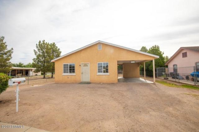1330 Third Street, Las Cruces, NM 88005 (MLS #1901433) :: Steinborn & Associates Real Estate