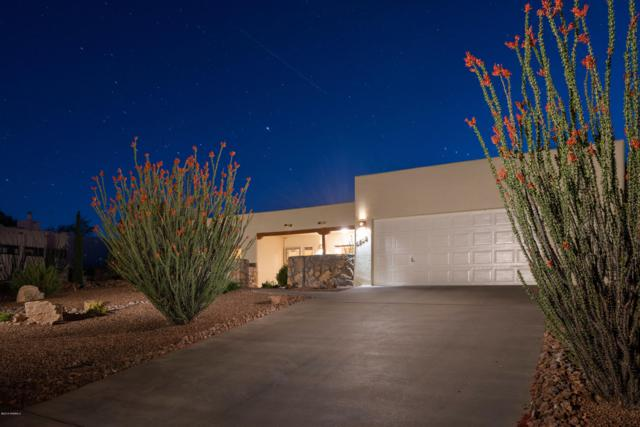 1615 Vista Del Cerro, Las Cruces, NM 88007 (MLS #1901443) :: Steinborn & Associates Real Estate