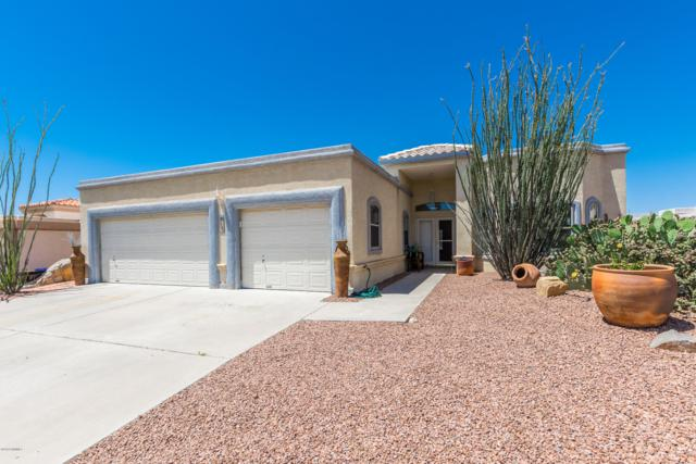 2287 Evening Star Avenue, Las Cruces, NM 88011 (MLS #1901451) :: Steinborn & Associates Real Estate