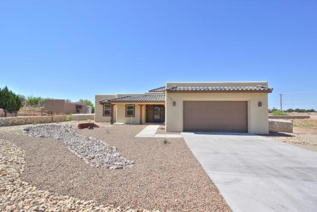 128 Coues Deer Avenue, Las Cruces, NM 88007 (MLS #1901452) :: Steinborn & Associates Real Estate