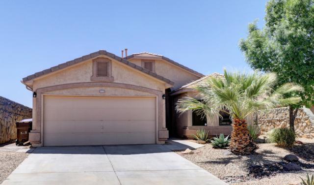 2519 Silver Hawk Avenue, Las Cruces, NM 88011 (MLS #1901465) :: Steinborn & Associates Real Estate