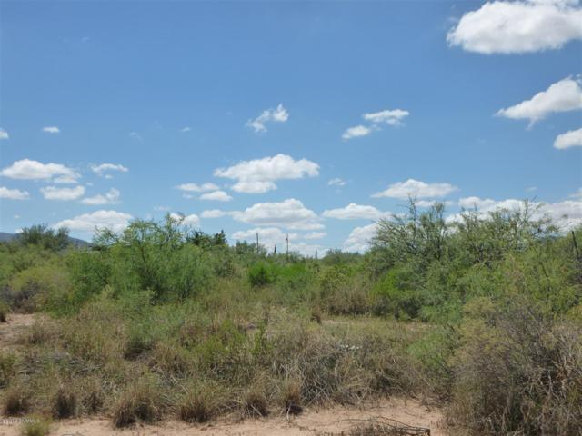 935 Wheatstone Drive, Chaparral, NM 88081 (MLS #1901466) :: Steinborn & Associates Real Estate