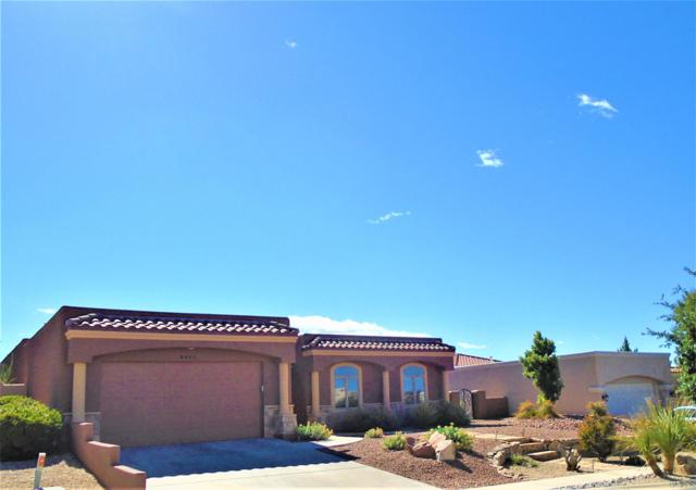 4495 Nambe Arc, Las Cruces, NM 88011 (MLS #1901467) :: Steinborn & Associates Real Estate