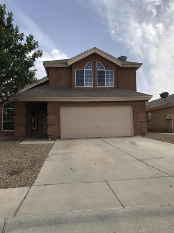 1343 Fountain Loop, Las Cruces, NM 88007 (MLS #1901496) :: Arising Group Real Estate Associates