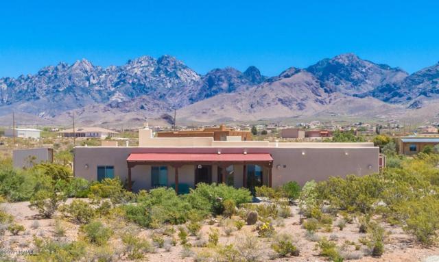 5145 Cueva Mine, Las Cruces, NM 88011 (MLS #1901509) :: Steinborn & Associates Real Estate