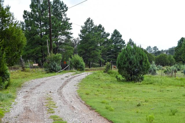 1592 Highway 24, PINON, NM 88344 (MLS #1901526) :: Steinborn & Associates Real Estate
