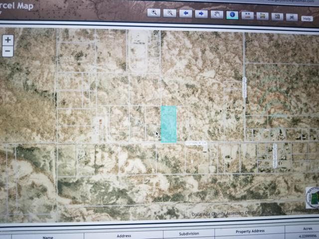 0000 Outback Drive, Las Cruces, NM 88012 (MLS #1901549) :: Steinborn & Associates Real Estate