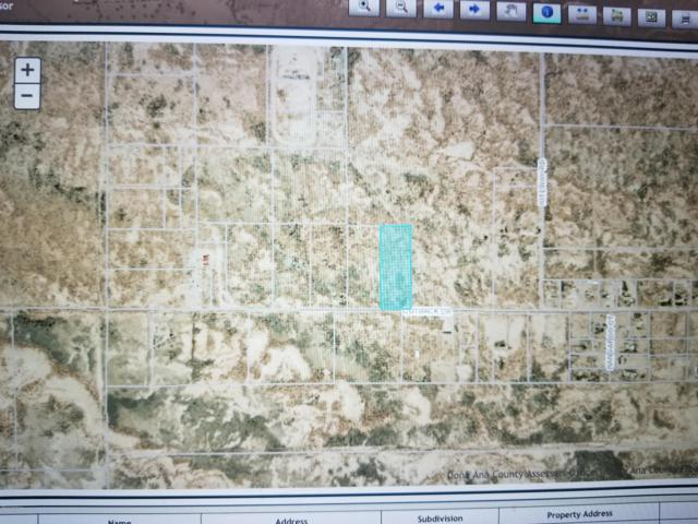 0001 Outback Drive, Las Cruces, NM 88012 (MLS #1901552) :: Steinborn & Associates Real Estate