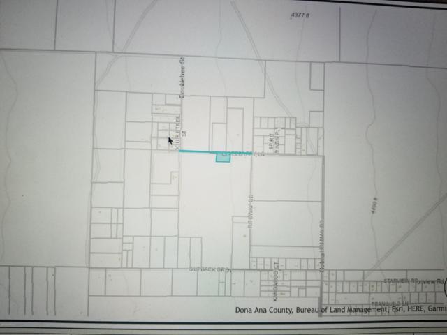 40 Leebarry Lane, Las Cruces, NM 88012 (MLS #1901556) :: Arising Group Real Estate Associates