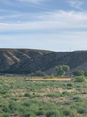 12595 Nm Highway 185, Las Cruces, NM 88005 (MLS #1901559) :: Better Homes and Gardens Real Estate - Steinborn & Associates