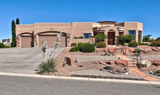 10055 Tuscany Drive, Las Cruces, NM 88007 (MLS #1901579) :: Steinborn & Associates Real Estate