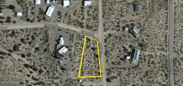 100 Clydesdale Road, Elephant Butte, NM 87935 (MLS #1901667) :: Arising Group Real Estate Associates