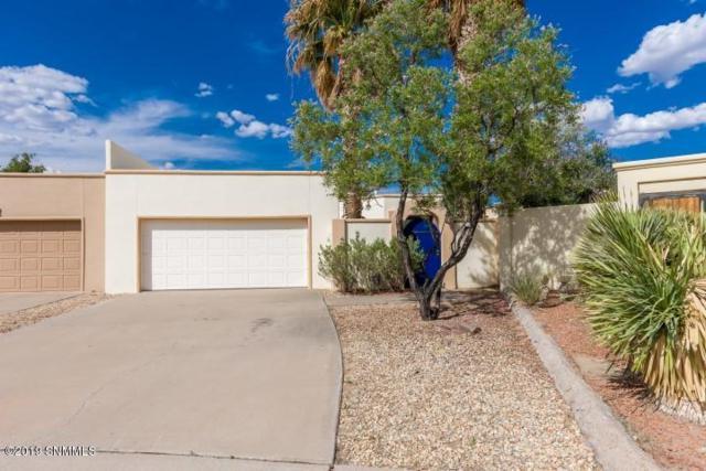 6820 Camino Blanco, Las Cruces, NM 88007 (MLS #1901673) :: Steinborn & Associates Real Estate