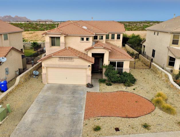 4519 Azure Hills Road, Las Cruces, NM 88011 (MLS #1901688) :: Steinborn & Associates Real Estate