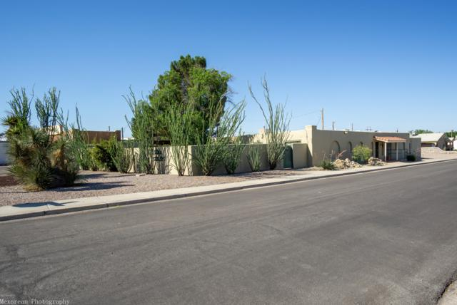 537 N Solano Drive, Las Cruces, NM 88001 (MLS #1901751) :: Steinborn & Associates Real Estate