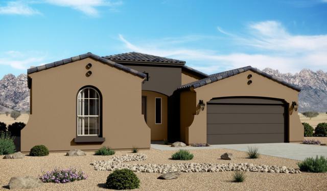 4217 Purple Sage Drive, Las Cruces, NM 88011 (MLS #1901759) :: Steinborn & Associates Real Estate