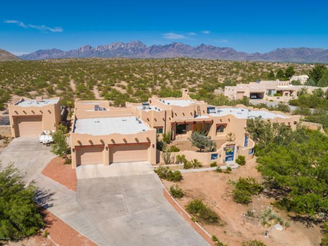5401 Superstition Drive, Las Cruces, NM 88011 (MLS #1901762) :: Steinborn & Associates Real Estate