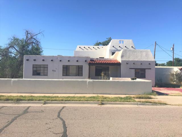 220 W Fleming Avenue, Las Cruces, NM 88005 (MLS #1901804) :: Steinborn & Associates Real Estate
