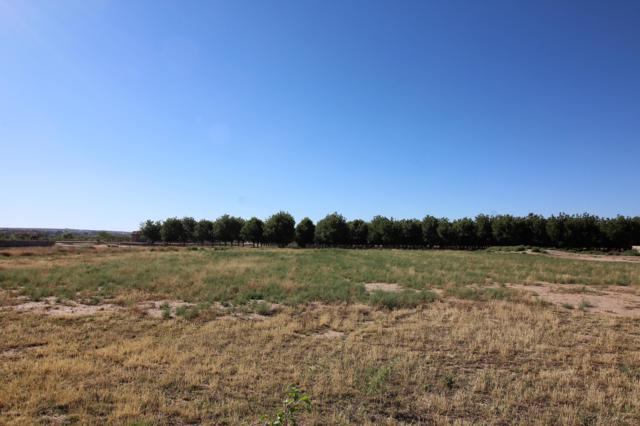 4636 Rociante Drive, Las Cruces, NM 88005 (MLS #1901805) :: Steinborn & Associates Real Estate