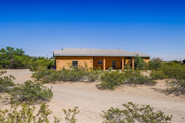 4825 Senita Drive, Las Cruces, NM 88011 (MLS #1901807) :: Steinborn & Associates Real Estate