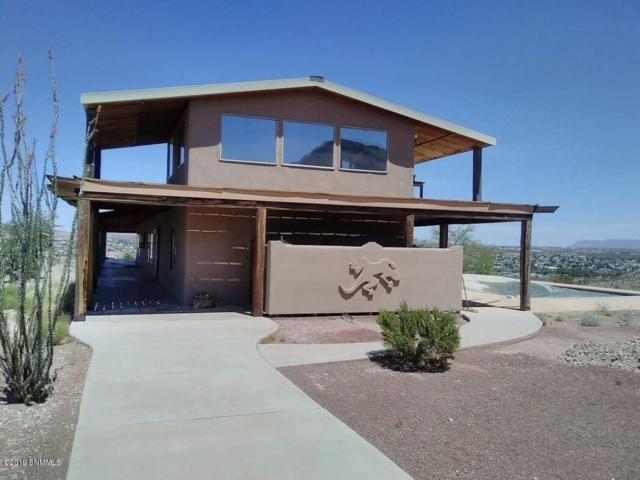 43 Turtleback Road, Elephant Butte, NM 87935 (MLS #1901814) :: Steinborn & Associates Real Estate