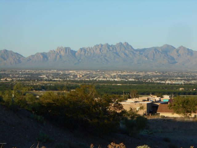 548 Larkspur, Las Cruces, NM 88007 (MLS #1901847) :: Steinborn & Associates Real Estate