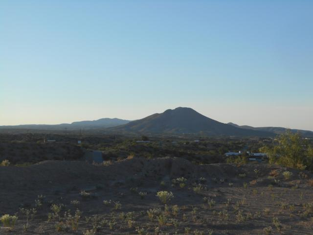 6000 Dusty Prints, Las Cruces, NM 88007 (MLS #1901849) :: Steinborn & Associates Real Estate