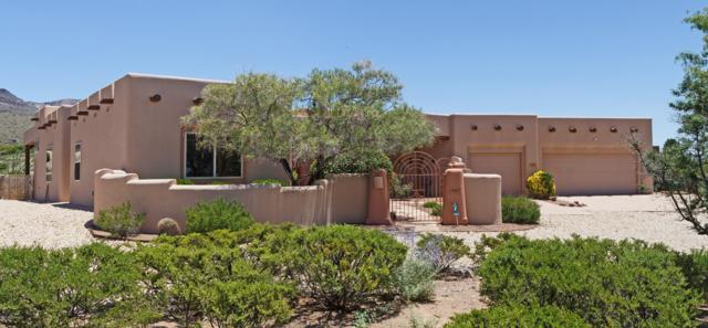 4895 Mother Lode Trail, Las Cruces, NM 88011 (MLS #1901860) :: Steinborn & Associates Real Estate