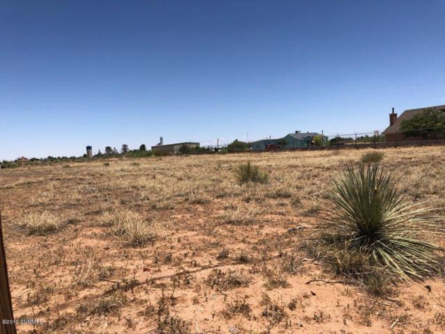 604 Paloma Blanca Drive, Chaparral, NM 88081 (MLS #1901862) :: Better Homes and Gardens Real Estate - Steinborn & Associates