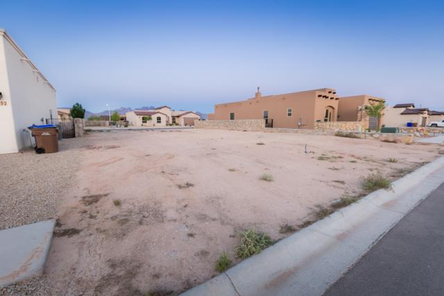 6048 Arosa Street, Las Cruces, NM 88012 (MLS #1901868) :: Steinborn & Associates Real Estate