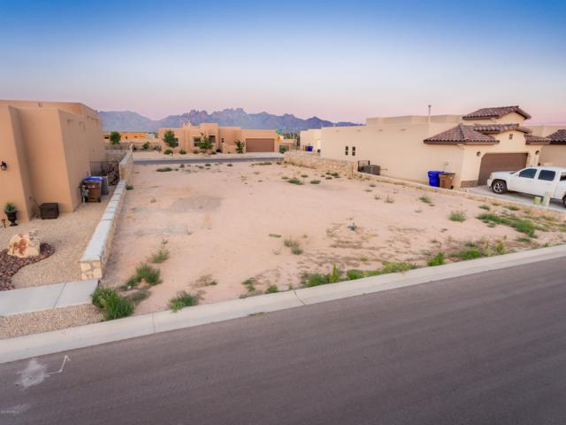 6040 Arosa Street, Las Cruces, NM 88012 (MLS #1901869) :: Steinborn & Associates Real Estate