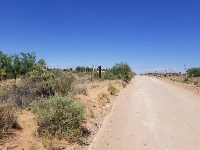 1521 Javelina Street, Chaparral, NM 88081 (MLS #1901873) :: Better Homes and Gardens Real Estate - Steinborn & Associates