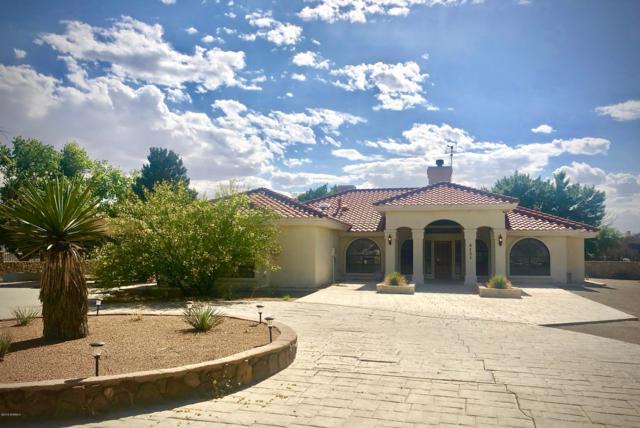 6405 Gato Road, Anthony, NM 88021 (MLS #1901880) :: Steinborn & Associates Real Estate