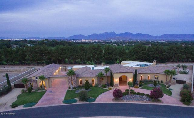 1930 Tapestry Circle, Las Cruces, NM 88005 (MLS #1901884) :: Steinborn & Associates Real Estate