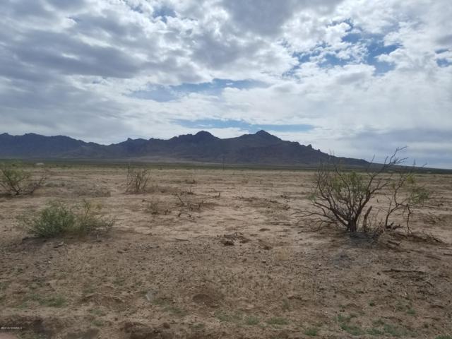 TBD Friar Rodriguez, Deming, NM 88030 (MLS #1901893) :: Steinborn & Associates Real Estate