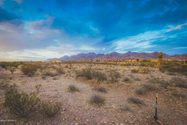 5073 Lost Padre Mine Road, Las Cruces, NM 88011 (MLS #1901896) :: Steinborn & Associates Real Estate