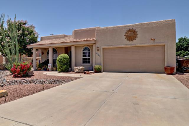 4141 Mojave Drive, Las Cruces, NM 88005 (MLS #1901908) :: Steinborn & Associates Real Estate