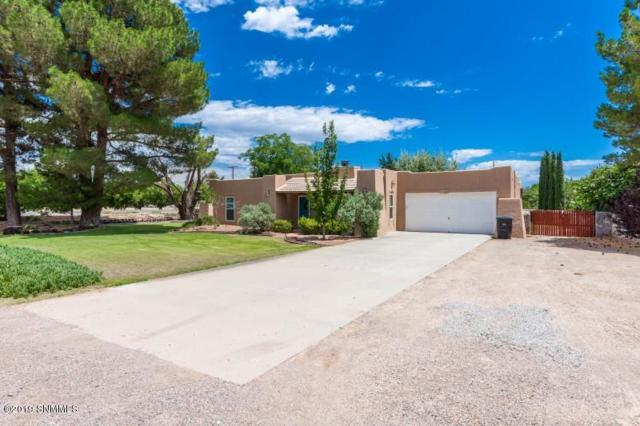 1401 Tierra Del Sol Drive, Las Cruces, NM 88007 (MLS #1901931) :: Steinborn & Associates Real Estate