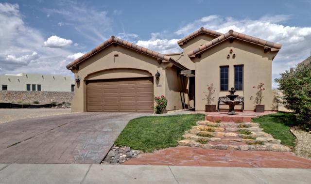 1060 Calle Griega, Las Cruces, NM 88011 (MLS #1901937) :: Steinborn & Associates Real Estate
