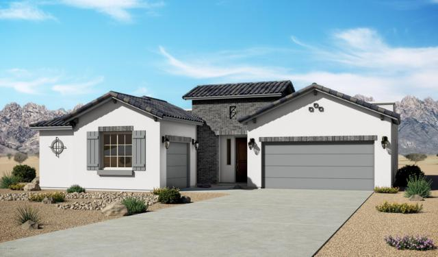 4225 Purple Sage Drive, Las Cruces, NM 88011 (MLS #1901946) :: Agave Real Estate Group