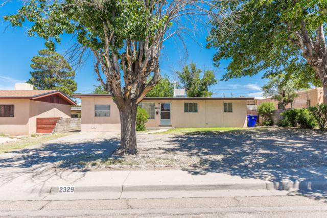 2329 E Idaho Avenue, Las Cruces, NM 88001 (MLS #1901957) :: Steinborn & Associates Real Estate