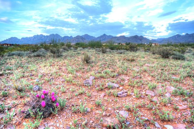 5094 Silver King Road, Las Cruces, NM 88011 (MLS #1901959) :: Steinborn & Associates Real Estate