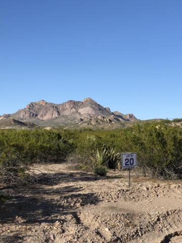 2131 Guamis Road, Las Cruces, NM 88012 (MLS #1901975) :: Steinborn & Associates Real Estate