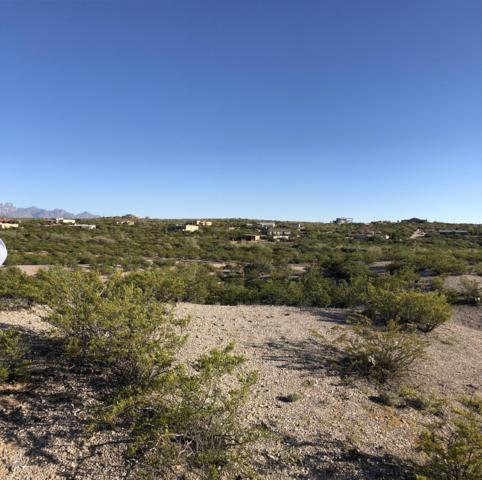 2074 Eclipse Road, Las Cruces, NM 88012 (MLS #1901977) :: Steinborn & Associates Real Estate