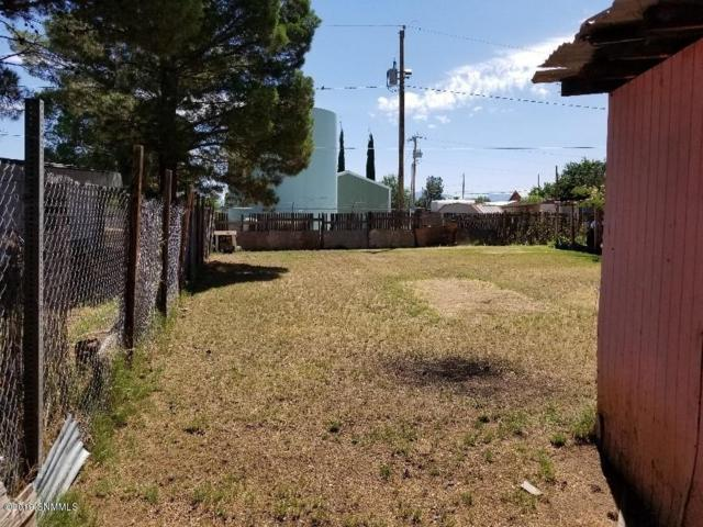 3317 Winterhaven Drive, Las Cruces, NM 88007 (MLS #1901980) :: Arising Group Real Estate Associates